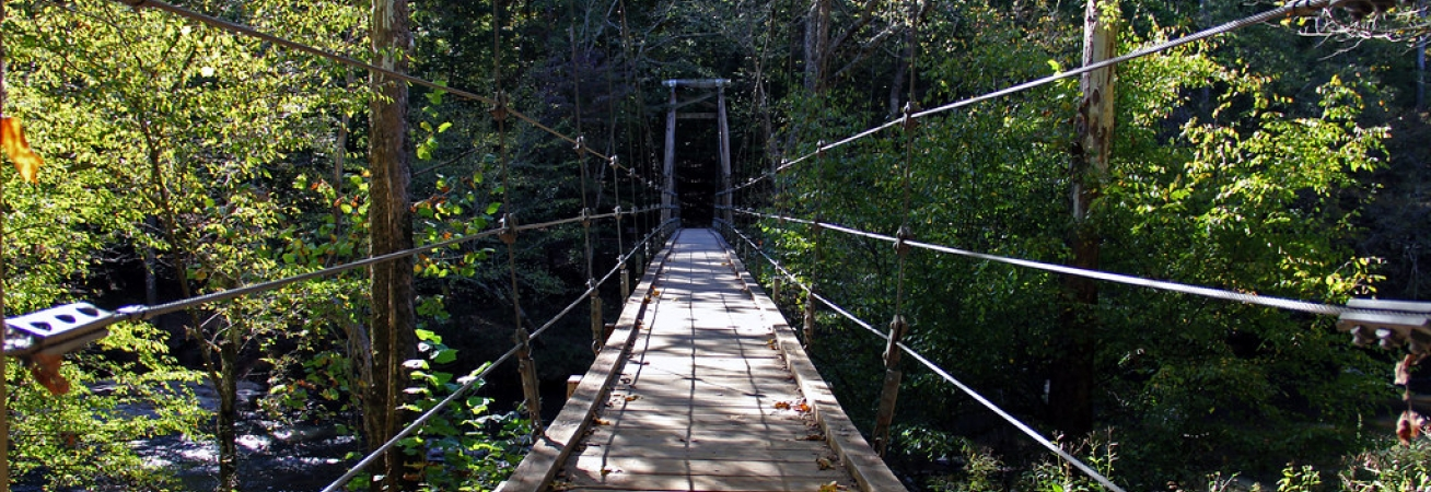 Eno Footbridge.jpg